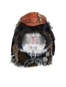 Bubba Capt Jack Sparrow